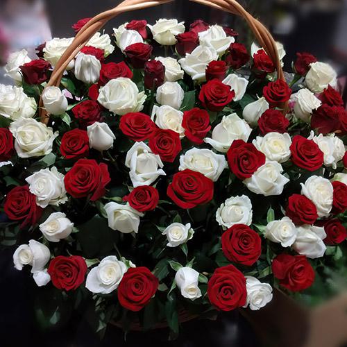 Фото товара Корзина красных и белых роз в Житомире
