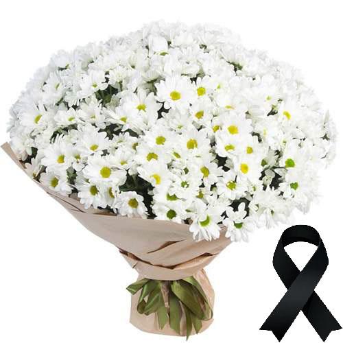 Фото товара 100 ромашек на похороны в Житомире